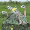 The Nerdy Birdies at RSPB Frampton Marsh - Steve Jones (1).jpg
